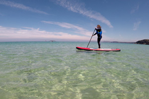 Stand Up Paddle Boards Or SUPs Inflatable and Rigid Boards